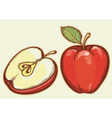 Red fresh apples vector image vector image