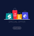 shopping bags with sale inscription online vector image vector image