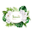 holiday banner with tropical palm monstera leaves vector image vector image