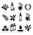Olive oil olive branch icons set vector image vector image