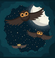 owls flies in the clouds under moon vector image vector image