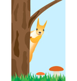 squirrel on the tree vector image