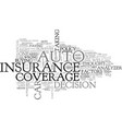 auto coverage analyzer text word cloud concept vector image vector image