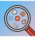 Bacteria and virus in magnifier glass vector image