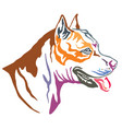 colorful decorative portrait american vector image vector image