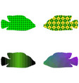 fish silhouette of four elements in the vector image