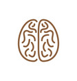 icon of brain of brown colour vector image
