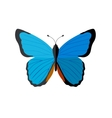 Insects Butterflies Isolated on White Background vector image vector image