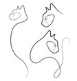 one line cat design silhouette vector image vector image