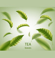realistic tea leaves background green leaves tea vector image