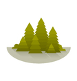 Spruce Forest Glade vector image