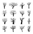 tree silhouettes winter tree branches dead autumn vector image