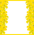 yellow cassia fistula - golden shower flower on vector image vector image