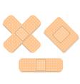 Adhesive bandage set vector image