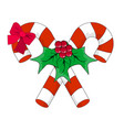 christmas candy cane with red bow and holly vector image