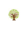 creative tree logo vector image vector image