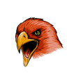 face of an eagle colored by red vector image