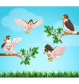 Four eagles flying in sky vector image
