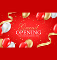grand opening party invitation card vector image vector image