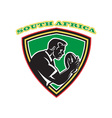 south africa rugby shield vector image vector image