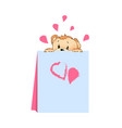 teddy bear hiding behind card vector image vector image