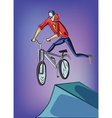 Teenager doing bike tricks on ramps vector image
