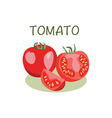 Tomato icon in flat style Isolated objec vector image vector image