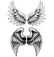 hand drawn wing set vector image