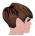 bob haircut vector image