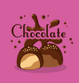 chocolate candies cream chips sugar vector image vector image