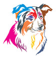 colorful decorative portrait of border collie vector image