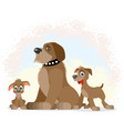 dogs of different ages vector image