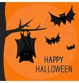Happy Halloween card Cute sleeping bat hanging on vector image