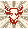 Label with a Bull vector image vector image