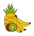 pineapple bananas and kiwi fresh vector image
