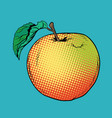 ripe yellow red apple with green leaf vector image vector image