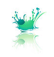 splash color wave with reflection vector image vector image