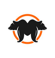 bear logo with letter m vector image vector image