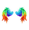 bright rainbow wings vector image vector image