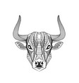 detailed bull head art vector image