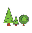 fir tree line icon concept fir tree flat vector image vector image