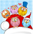greeting christmas card five owls on blue vector image