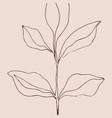 minimalism card floral art design delicate poster vector image vector image