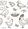poultry farm seamless sketch pattern vector image vector image