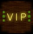 vip logo neon colorful sign night city banner vector image
