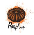 a pumpkin hand drawn vector image vector image