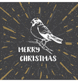 Black vintage Christmas background with bullfinch vector image vector image
