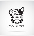 dog and cat face design on a white background vector image vector image