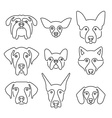 Dog Breeds vector image vector image