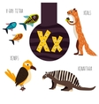Fun animal letters of the alphabet for the vector image vector image